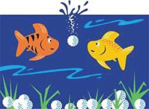 NFW-GolfForeFish